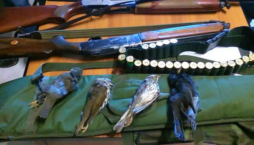 Controlli caccia ed antibracconaggio  Sequestrati fucili, munizioni e strumenti di cattura non consentiti
