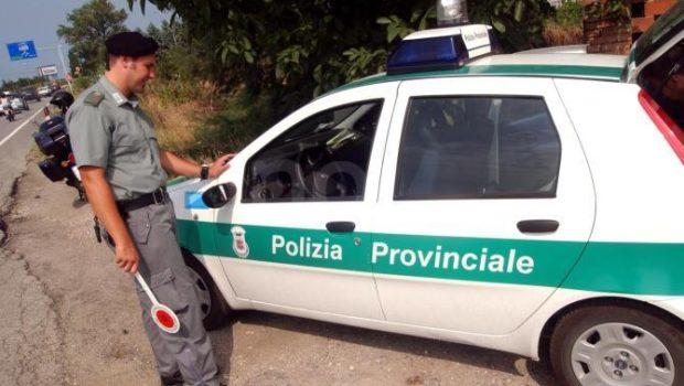 Coronavirus, anche la polizia provinciale pattuglia il territorio contro la diffusione del virus