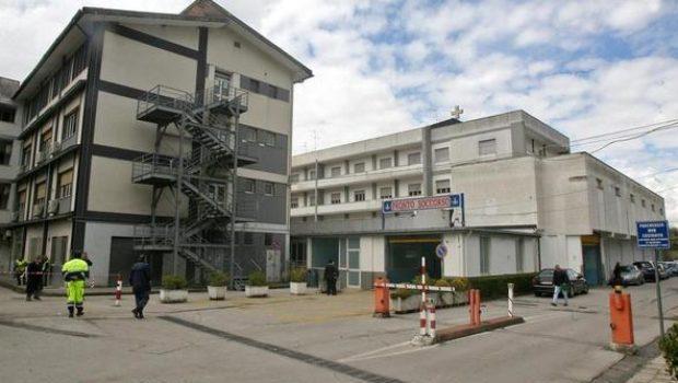 Rischia lo choc anafilattico dopo puntura d'insetto, 46enne di Atena Lucana salvata all'ospedale di Polla