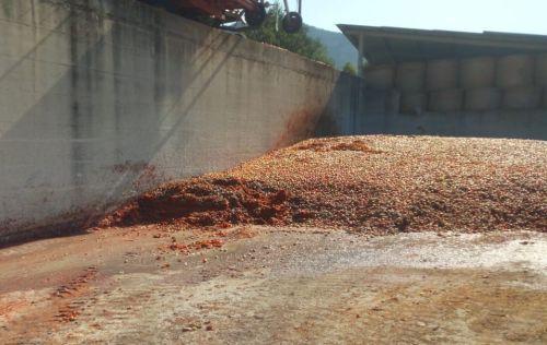 Giungano: scoperta ed interrotta una gestione illecita di rifiuti