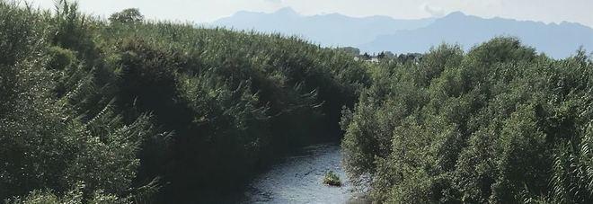 Nuovi sversamenti nel Tusciano: adesso muoiono persino i pesci