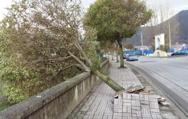 Forti raffiche di vento nel salernitano: problemi di viabilità