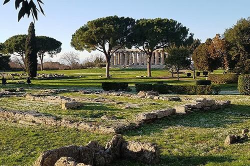Paestum: rinventi nella zona dei templi due ordigni bellici della II Guerra Mondiale