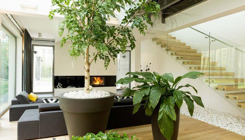 Arredamento green per la casa? Bello e possibile