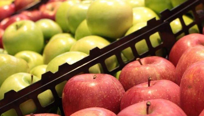 Mosca Orientale della frutta: la Regione Campania riconosce lo stato d'emergenza fitosanitaria