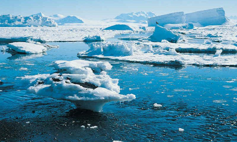Un laboratorio di studio dei cambiamenti climatici nell'ambiente marino antartico