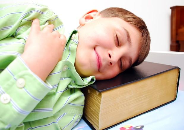 Ecco come si impara una lingua mentre si dorme