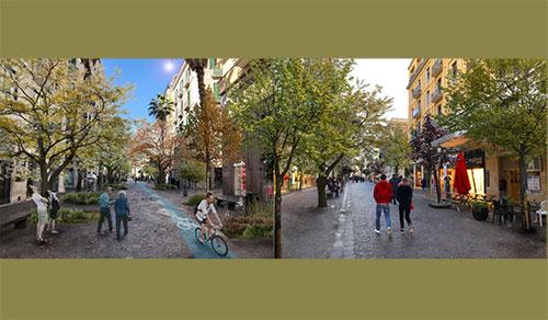 Salerno: «Restyling del Corso con gli alberi anti-smog»