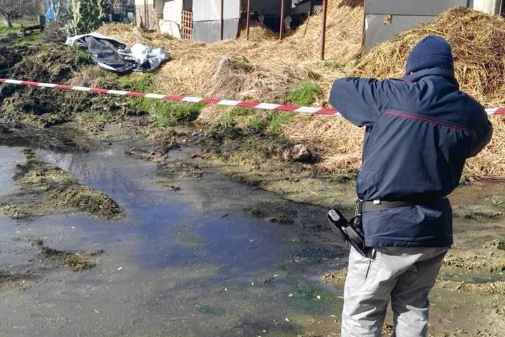 Smaltimento illecito di reflui zootecnici a Buccino, sequestrata un'area di 200 mq.