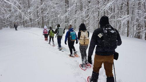 Weekend di Freddo e Neve. Escursioni sulla neve al Monte Cervati anche a marzo