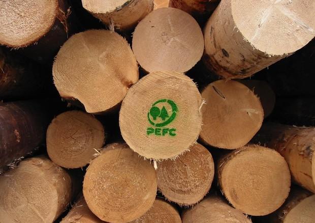 Aumentano in Italia i boschi gestiti in modo sostenibile