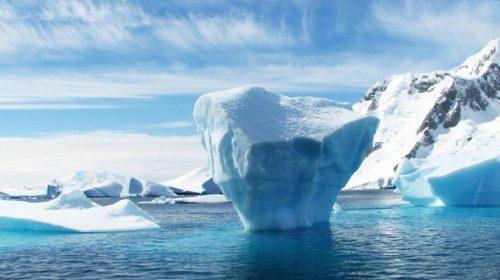 In Antartide alla scoperta di un ecosistema nascosto sotto i ghiacci