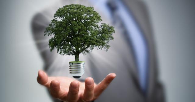 """Ambiente, Costa: """"Al 2030 il 32% dei consumi di energia da rinnovabili"""""""