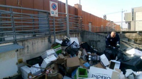 Rifiuti, topi ed escrementi a Salerno: sanzionati gestori e proprietari di animali incivili