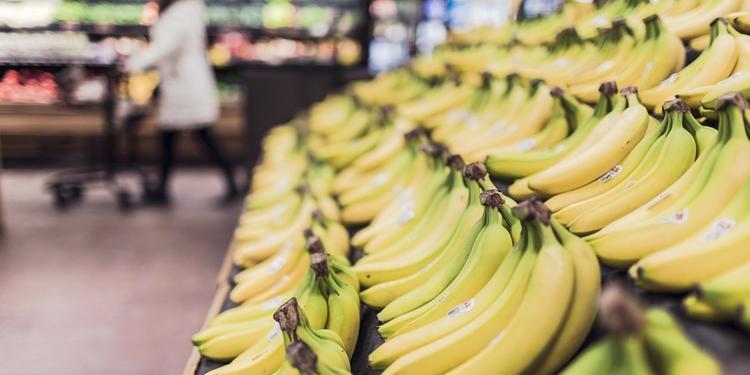 Terra, business e costi nel Salernitano: pagano i consumatori