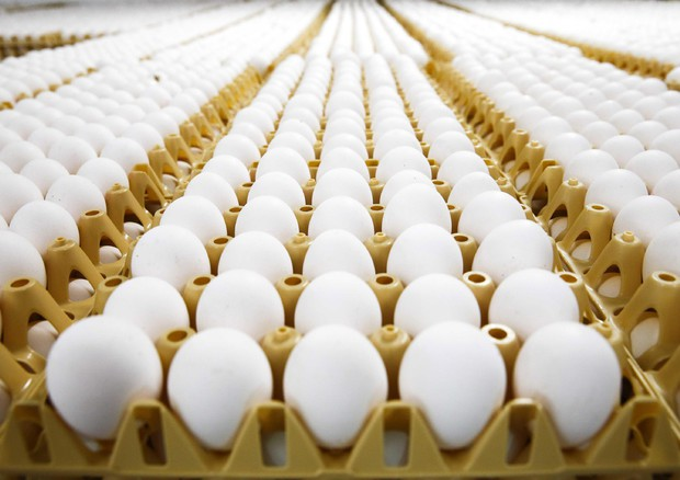 Pasqua, 400 milioni di uova nella Settimana Santa