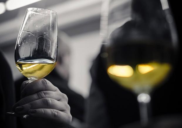 E' boom giovani donne del vino (+51%)
