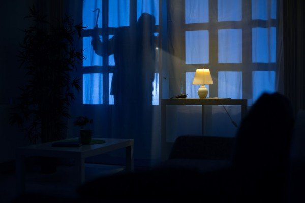 Ladri in casa con la padrona: la donna si rifugia sul tetto