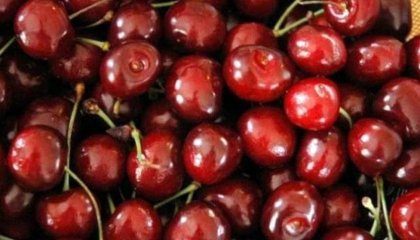 Ad Acquavella ritorna la sagra della ciliegia 8-9 giugno