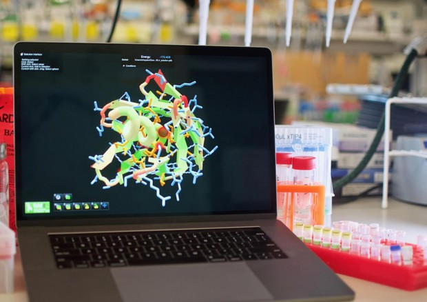 Un videogame per progettare proteine sintetiche