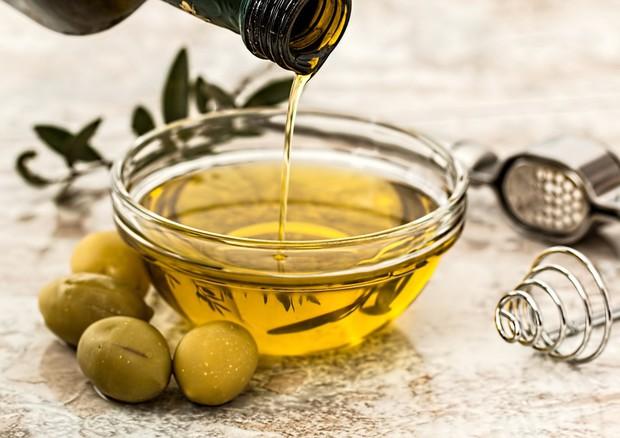 Xylella, primo olio da ulivi resistenti in Salento