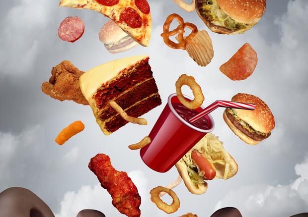Nel mondo 140 miliardi di tonnellate di cibo che nutre l'obesità
