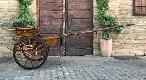 Si ribalta con il calesse in litoranea a Pontecagnano, grave un anziano