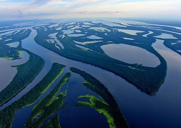 Amazzonia, falso che produca il 20% dell'ossigeno del mondo