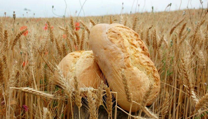 Festa del pane a Salerno 14-15 settembre 2019