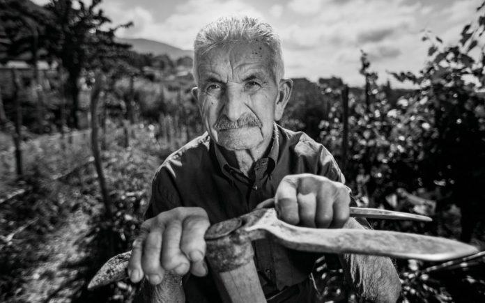 Americani volano in Cilento per studiare i longevi contadini di Cuccaro Vetere