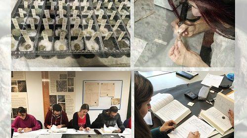 LE MONETE DI VELIA ALLA BORSA DEL TURISMO ARCHEOLOGICO A PAESTUM