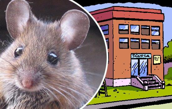Non solo maltempo. Scuola chiusa per i topi