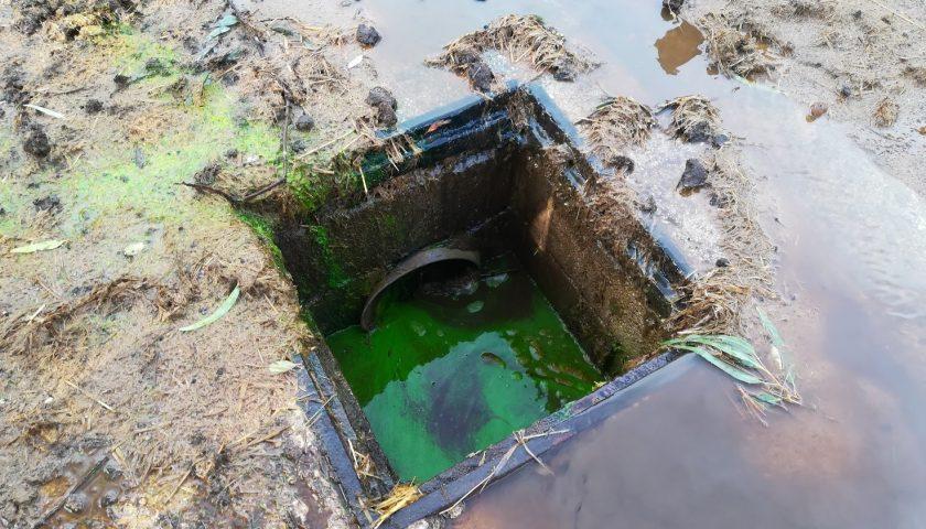 Sversamenti illeciti di reflui zootecnici: sequestrate le aree e denunciato l'autore