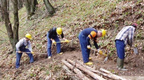 """Regione, Cammarano: """"Idraulico-forestali, avviare percorso per la definitiva stabilizzazione"""""""