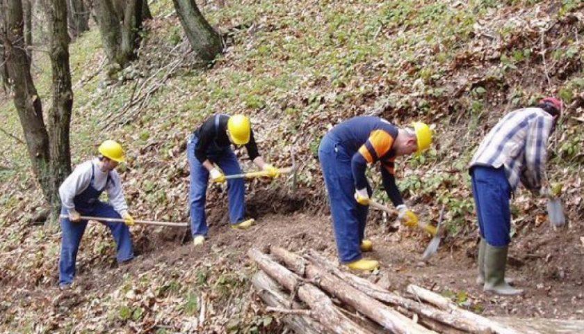 Regione Campania: deliberato l'accordo quadro per gli idraulico forestali, oltre 100 milioni di euro per il programma di forestazione