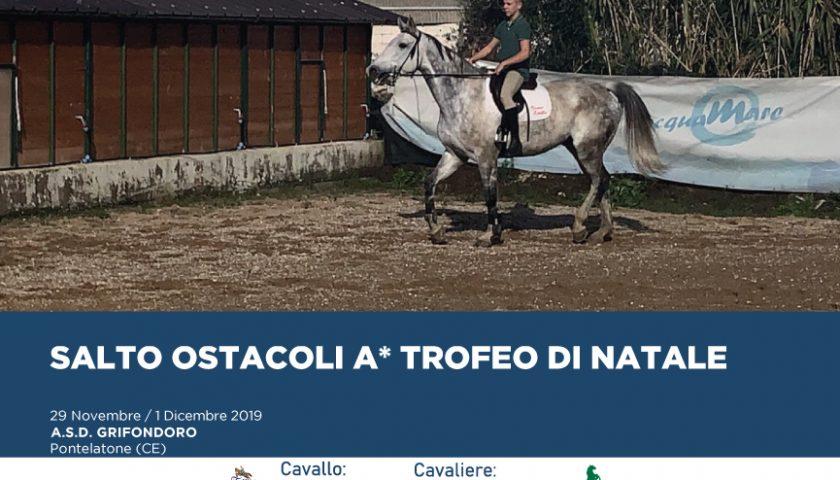 CONCORSO SALTO OSTACOLI A* TROFEO DI NATALE IN GARA ABENTEURER DELLA SCUDERIA IPPOTEAMDICERBO