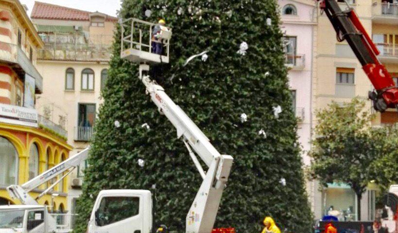 Luci d'Artista, in allestimento l'albero di piazza Portanova: pronto per il week end dell'Immacolata