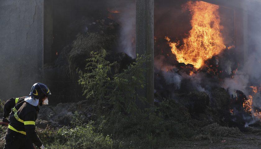 Incendio nel fienile a Polla, a fuoco 400 rotoballe. Indagano i carabinieri