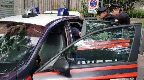 Piantagione di marijuana, arrestato a Capaccio un 26enne residente ad Altavilla