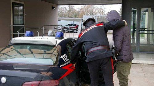 Droga nella serra in casa, 24enne arrestato a Romagnano al Monte