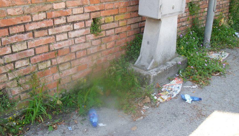 Salerno, cemento per tamponare le tane per topi in strada a Mariconda