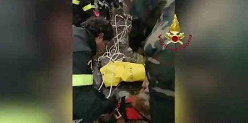 Cane finisce in un dirupo, salvato dai Vigili del Fuoco