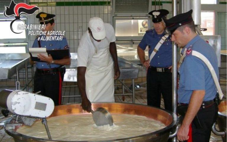 "A Capaccio/Paestum i carabinieri sequestrano un caseificio ""fantasma"""
