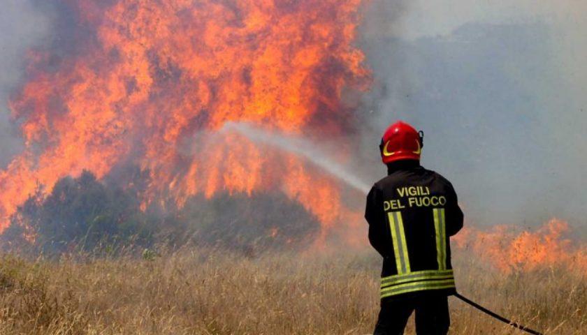 Vasto incendio a Montecorice, vigili del fuoco al lavoro