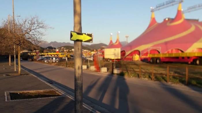 Manifesti per il circo, gli animalisti scrivono al sindaco di Salerno