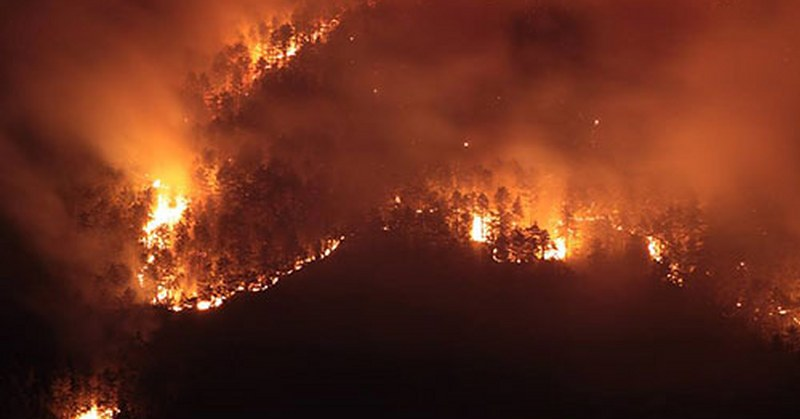 Tornano anche i piromani, incendiata la collina che sovrasta Sant'Eustachio