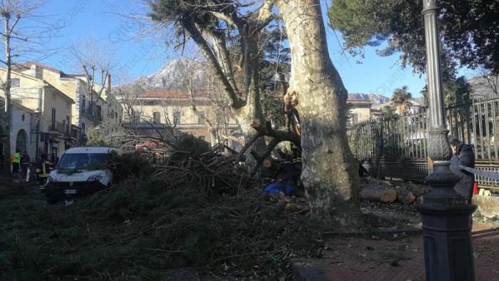 Albero caduto a Cava de' Tirreni, la Procura mette sotto sequestro la Villa Comunale