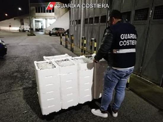 Blitz al mercato ittico di Salerno, sequestrata mezza tonnellata di pesce