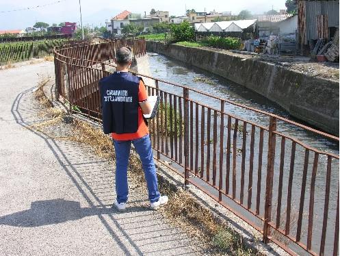 Illeciti ambientali in provincia di Salerno, 12 persone denunciate