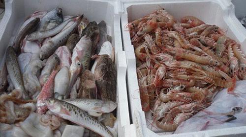 Vendeva pesce di dubbia provenienza, sequestro e multa per il titolare di una pescheria a Santa Marina